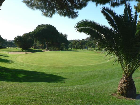 Diseño de campos de golf
