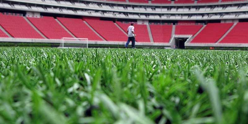 ¿Por qué seleccionar césped artificial para un campo de fútbol?