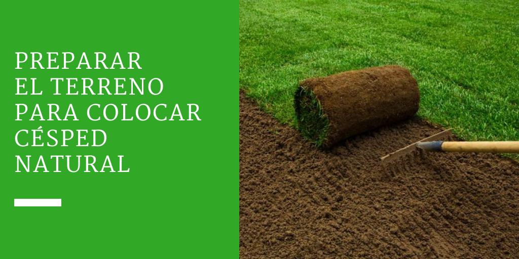 Cómo preparar el terreno para colocar césped natural