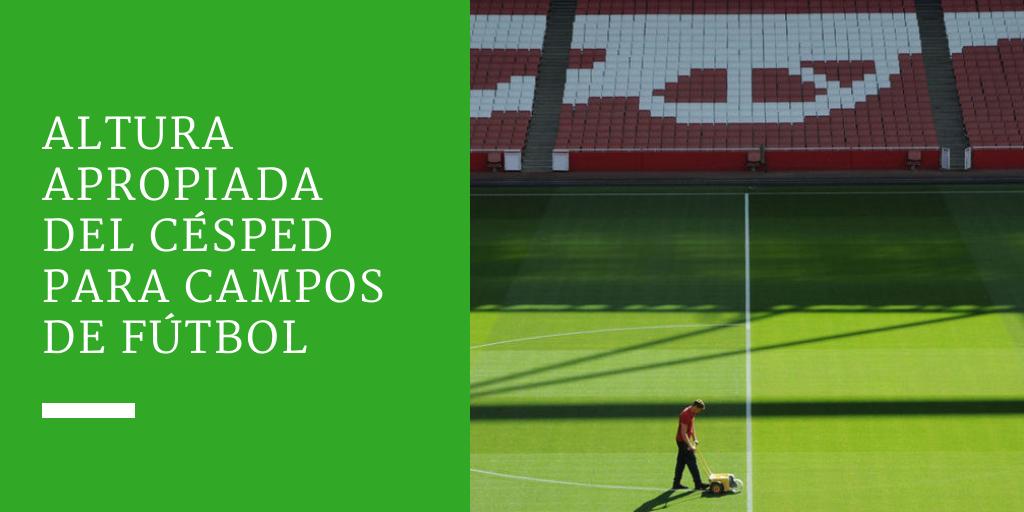 Altura apropiada del césped para campos de fútbol