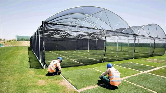 Cómo se prepara el césped natural para Qatar 2022