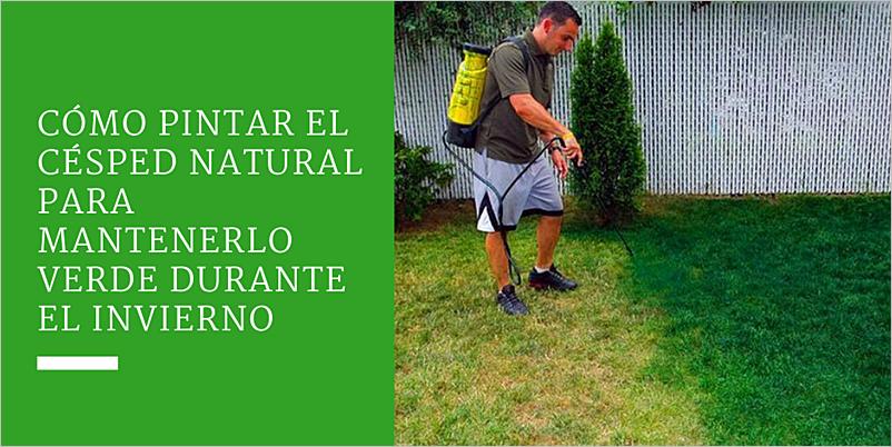 Cómo pintar el césped natural para mantenerlo verde durante el invierno