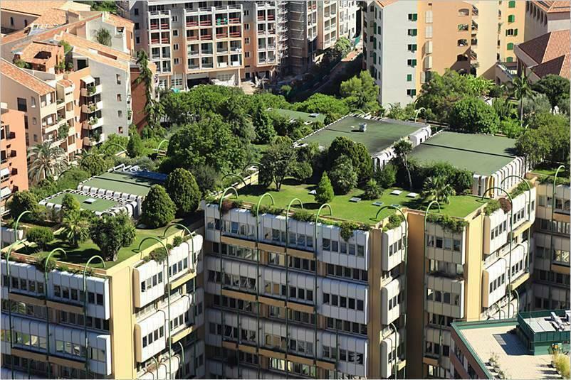 Qué son los Techos Verdes o Green Roofs