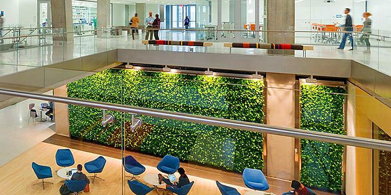 Qué son los jardines verticales o paredes verdes