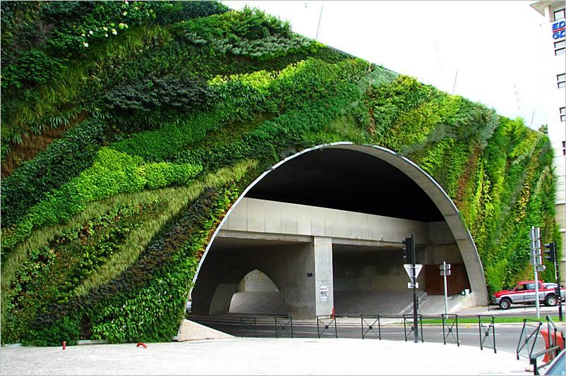 Jardines verticales o paredes verdes exteriores