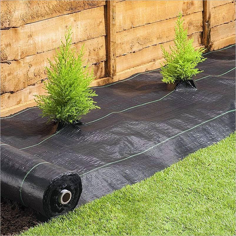 Formas de controlar las malas hierbas de nuestro césped y jardín