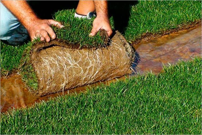 Almacenamiento y cuidados del césped natural en tepes