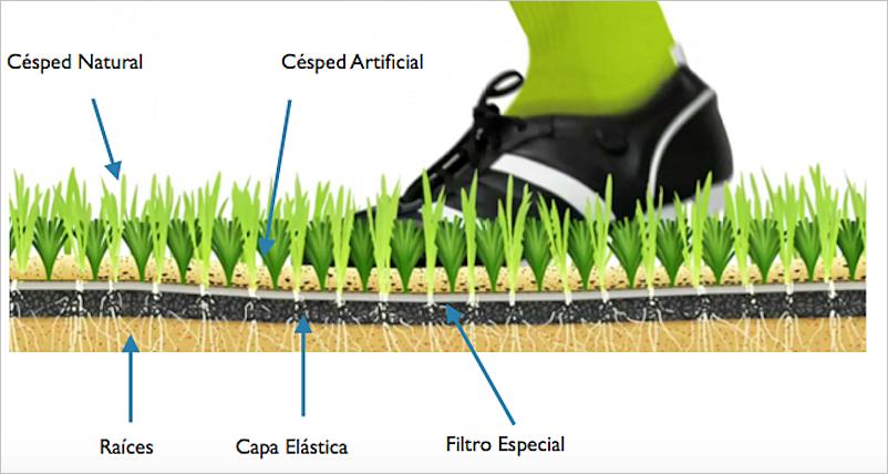 Evolución de las superficies de juego de césped natural