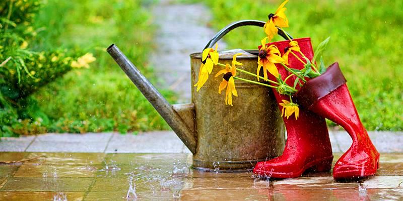Cómo recuperar un césped inundado
