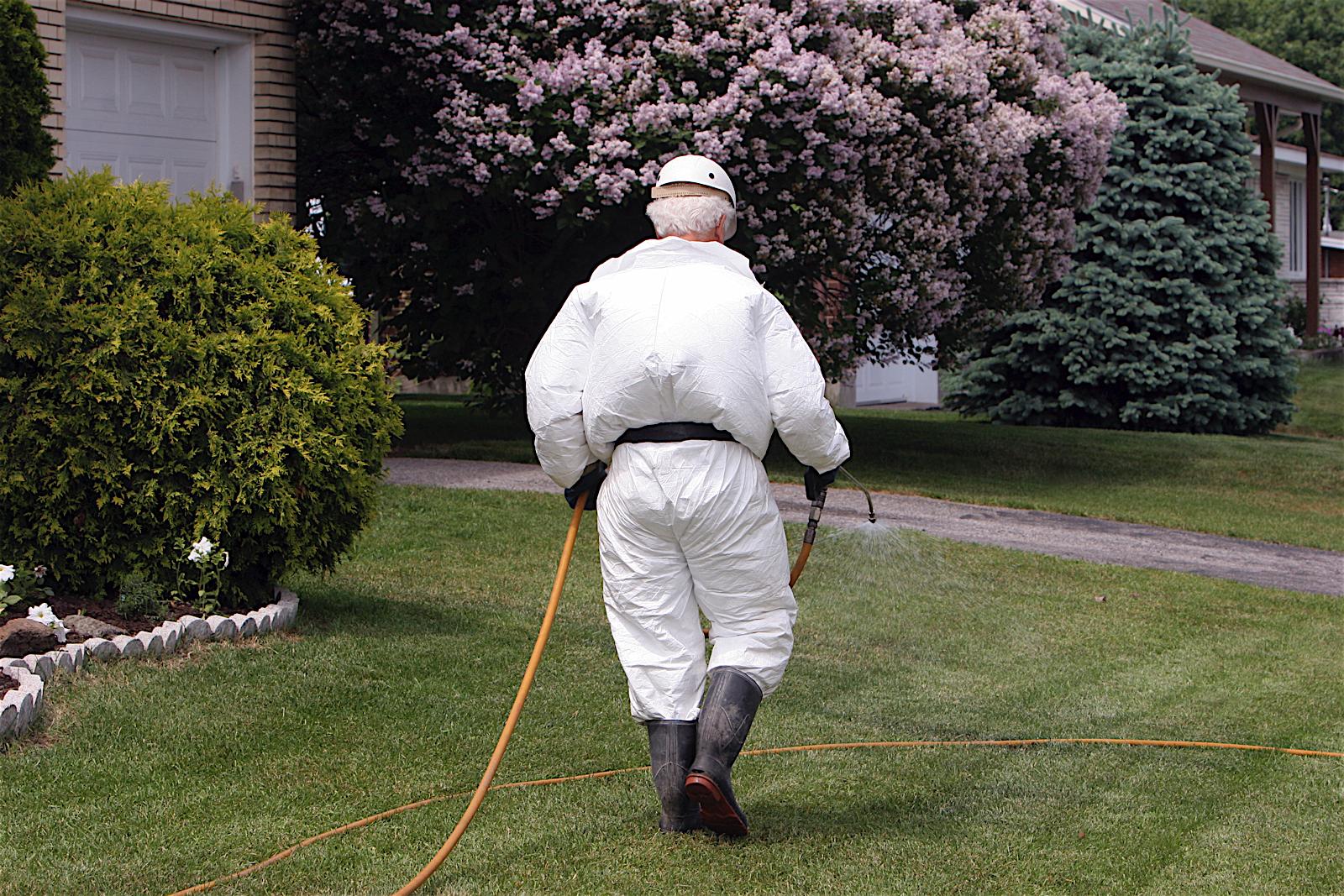 Razones para no usar pesticidas en nuestro césped y jardín
